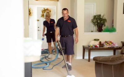 Nicholas Feola – Everything Under The Son Carpet Cleaning